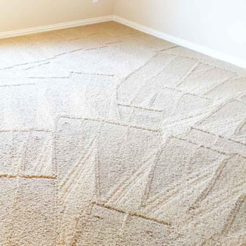 clean cream colored carpet with fresh track marks from carpet cleaning